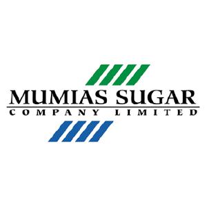 Mumias-01